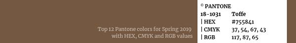 pantone-springsummer-2019_18-1031-toffee_600px